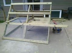 great a frame chicken coop design