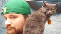 A Man Takes a Chance on a Hissy Shelter Kitty, After a Few Pets, Everything Changes.. - Love Meow