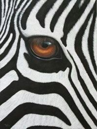 Zebra Original Painting Watercolor African Wildlife Art Black and White Abstract Stripes Animal Painting Gift Zebras, Beautiful Creatures, Animals Beautiful, Regard Animal, Animals And Pets, Cute Animals, Eye Painting, Zebra Painting, Tier Fotos