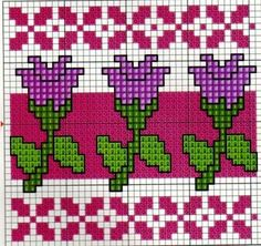Tulipa e mais