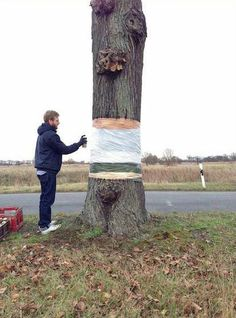 levitating tree street art illusion by daniel siering and mario shu (6)