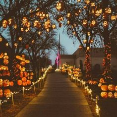 Pumpkin Halloween Decor Ideas for the Thriller Night - Hike n Dip - - Pumpkin is a major part of Halloween and Fall decoration. Here you will find some of the classiest and most fabulous Pumpkin Halloween Decor Ideas. Halloween Tags, Happy Halloween, Halloween 2019, Holidays Halloween, Halloween Pumpkins, Halloween Party, Halloween Ghosts, Halloween Mantel, Halloween Night