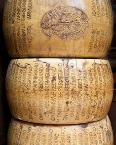 Parmesan wheels  Italian cheese