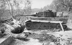 Wrecked American Sherman and German Tiger tanks south of Florence, Italy (1944)