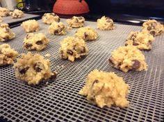 Raw dehydrator cookie recipes