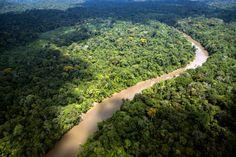 O ASSUNTO É!?: Como se sairia a Amazônia se cada estado fosse um ...