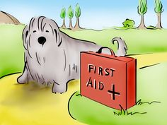 How to Become a Professional Dog Walker -- via wikiHow.com