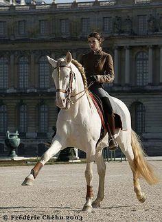 Académie du spectacle équestre - Academy of Equestrian Arts, Versailles  http://en.chateauversailles.fr/news-/events/shows/equestrian-show-academy