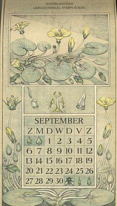 Le Roy, Charles, illustrator. September. Botanische kalender (Dutch botanical calendar). 1925.