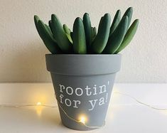 to buy and sell all things handmade Rootin For Ya Punny Planter Indoor Pot Cactus Planter Cacti Planter Pot Succulent Planter Small Planter Gray Pot Plant PunRoot. Small Cactus, Cactus Pot, Small Succulents, Succulent Pots, Cactus Flower, Succulents Garden, Cactus Plants, Potted Flowers, Cacti