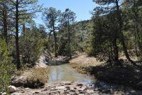 De donde proviene el agua que fluye en la Región Lagunera?