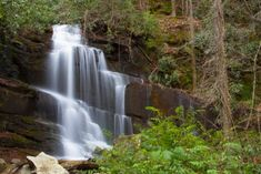 There is also one county in Georgia that is home to 34 different falls, which seems like one heck of an adventure waiting to be had. Waterfalls In Georgia, Gorges State Park, Cascade Falls, Autumn Lake, Mountain States, Beach Camping, Weekend Trips, State Parks, National Parks
