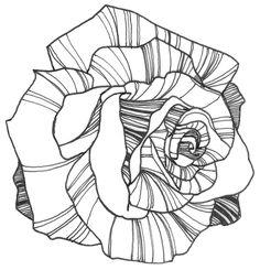 Nicole Illustration: Flower Power