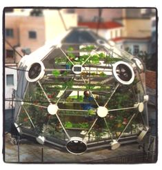GLOBE / HEDRON is a bamboo greenhouse designed to organically grow fish and vegetables on top of generic flat roofs. The design is optimized for aquaponic farming techniques: the fish's water nourishes the plants and plants clean the water for the fish.  Using this farming technique, GLOBE / HEDRON is optimized to feed four families of four all year round.