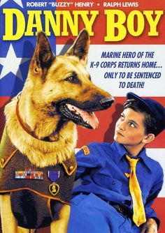 """The PRC """"special"""" DANNY BOY stars Ace the Dog in the title role. Danny Boy, a…"""
