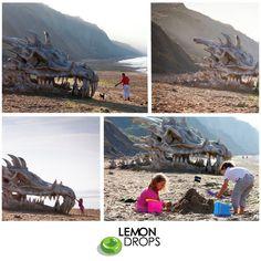 Já pensou estar caminhando pela praia e dar de cara com uma caveira gigante de dragão?    Para promover a série Game of Thrones, uma empresa resolveu criar essa gigantesca caveira de dragão e colocar em uma praia do Reino Unido, como se ela tivesse chegado ali por causa da maré!