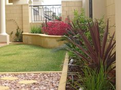 Gardendeva provides you the best for domiciles as well as for the companies who want to have the ultimate outdoor and indoor decor with the modern garden designs. Contact us anytime! Modern Garden Design, Modern Design, Types Of Herbs, Climbing Roses, Plant Nursery, Potting Soil, Cool Plants, Small Gardens, Yellow Roses