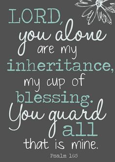 Psalm 16:5 ~ Lord, You alone are my inheritance, my cup of blessing. You guard all that is mine...