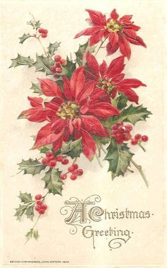 Red Poinsettia – so pretty - Christmas Crafts Christmas Poinsettia, Old Christmas, Christmas Scenes, Old Fashioned Christmas, Victorian Christmas, Retro Christmas, Christmas Greetings, Christmas Holidays, Christmas Postcards
