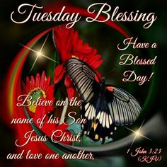Good Morning Everyone, I pray that you have a safe and blessed day! Tuesday Quotes, Its Friday Quotes, Happy Tuesday Morning, Tuesday Greetings, Christmas Bible Verses, Bon Mardi, Biblical Quotes, Biblical Womanhood, Faith Quotes