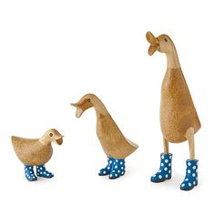 These adorable and easy-to-care-for ducks come with cute boots.