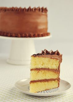Vanilla Buttermilk Cake with Fudge Frosting