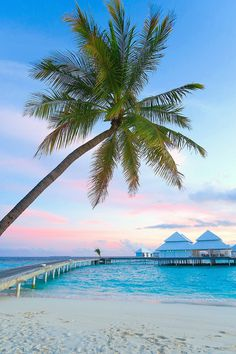 Watching the sunrise from the beach in front of the overwater villa in the Maldives. We had an amazing honeymoon in the Maldives!