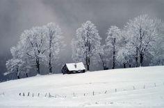 Paltinis, Sibiu, Romania Cool Photos, Amazing Photos, Winter Photos, Winter Season, Nature Photos, Painting Inspiration, Winter Wonderland, Sibiu Romania, Scenery