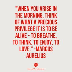 """When you arise in the morning, think of what a precious privilege it is to be alive - to breathe, to think, to enjoy, to love."" #inspiration #quote #gratitude   -Marcus Aurelius"