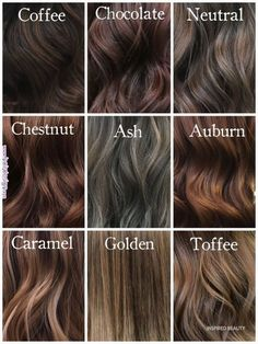 Chocolate Brown Hair Color, Chocolate Hair, Brown Hair Colors, Chesnut Brown Hair, Chestnut Hair Colors, Mocha Brown Hair, Darkest Brown Hair Color, Caramel Colored Hair, Korean Hair Color Brown