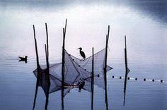 The Orbetello lagoon oasis