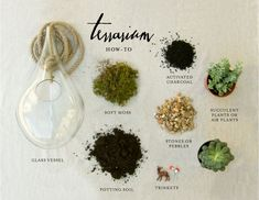 How-to Terrarium!  Can also fill with colored glass stones, floating flowers in the spring, spook them up at Halloween.  Hand in your windows, on your porch, in a corner , etc.