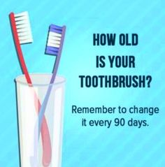 Teeth Are Fun: An Old Toothbrush Is A Dirty, Ineffective One - Holistic Dentist Paige Woods Holistic Dentist, Nooks, Brighton, Dental, San Diego, Teeth, Day, Free, Tooth