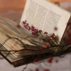 Read old books. Old Books, Vintage Books, Antique Books, I Love Books, Books To Read, Book Flowers, Book Aesthetic, Book Nooks, Book Photography