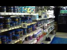 Tips and products for keeping fighting fish