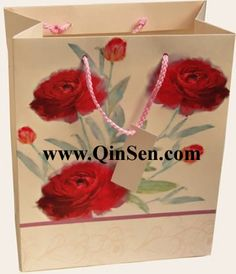 Paper bag for apparel shopping.Custom make various paper bag.OEM/ODM are accept. www.qinsen.com