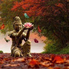 transform into compassion... Kwan Yin with lotus flower and butterflies. Puede estar sentada o de pie sobre una flor de loto, que es uno de los principales símbolos de la pureza budista, ya que esta hermosa flor que crece en el barro. El significado es que nuestro corazón debe ser puro como la flor de loto, a pesar de que nuestra vida puede estar rodeada por lo sucio (o impuro), personas y situaciones.