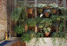 Ao idealizar o painel vegetal, a paisagista Claudia, da La Calle Florida, usou uma grade de madeira para amarrar as placas de xaxim recuperadas e os vasos com plantas pendentes