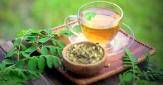 Moringa Tea Benefits: Miracle in a Cup! Tea Benefits, Health Benefits, Effects Of Chemotherapy, Miracle Tree, Usda Food, Prevent Diabetes, How To Make Tea, Lower Cholesterol, Brain Health