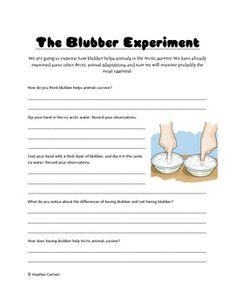 blubber glove worksheet freebie for my classroom pinterest experiment worksheets and gloves. Black Bedroom Furniture Sets. Home Design Ideas