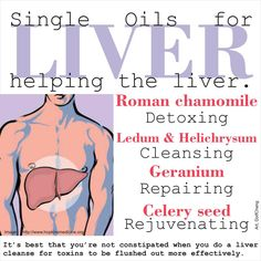 Young Living Roman Chamomile for Detoxing, Ledum & Helichrysum for Cleansing, Geranium for Repairing & Celery Seed for Rejuvenating.http://www.us.ylscents.com/cindyland