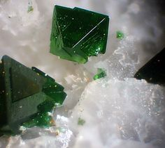 Libethenite, Cu2PO4(OH), Miguel Vacas Mine, Vila Viçosa, Portugal. Size 1.1 mm. Copyright Luigi Mattei