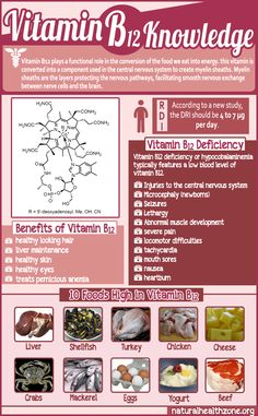 Amazing Facts About Vitamin B12 ►► http://www.herbs-info.com/blog/amazing-facts-about-vitamin-b12/?i=p
