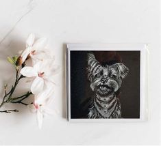 Cute Baby Elephant, White Pencil, Yorkshire Terrier, White Envelopes, Monochrome, How To Draw Hands, Art Pieces, Greeting Cards, Joy