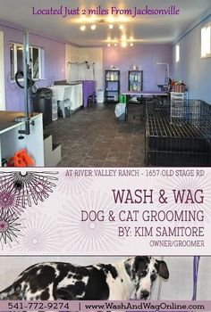 Wash and Wag Grooming