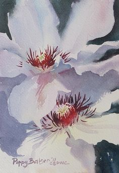 Clematis by Poppy Balser
