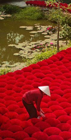 Making Red Incense . Vietnam