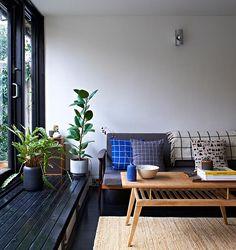 Today's Coolest Habitats: Tilly Hemingway • Habitat Blog