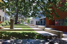 Canberra's New Acton Precinct incorporates art, retail, hospitality facilities and apartment complexes. Apartment Complexes, Kingston, Landscape Architecture, Sidewalk, Deck, Outdoor Decor, K2, Landscapes, Paisajes