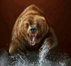 Russya Large Animals, Animals And Pets, Grizzly Bear Tattoos, Bigfoot Photos, Native American Animals, Bear Paintings, Bear Hunting, Bear Drawing, Bear Pictures
